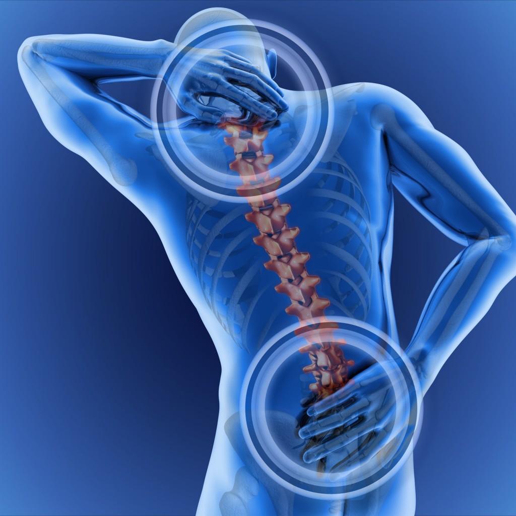 especialista en columna vertebral